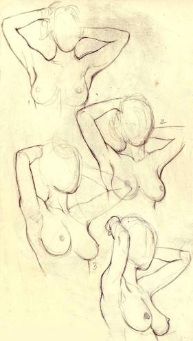 breasts_turnaround